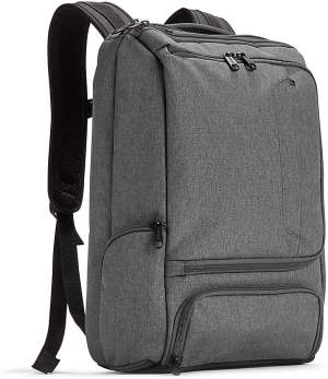 Professional Laptop Backpack by eBags